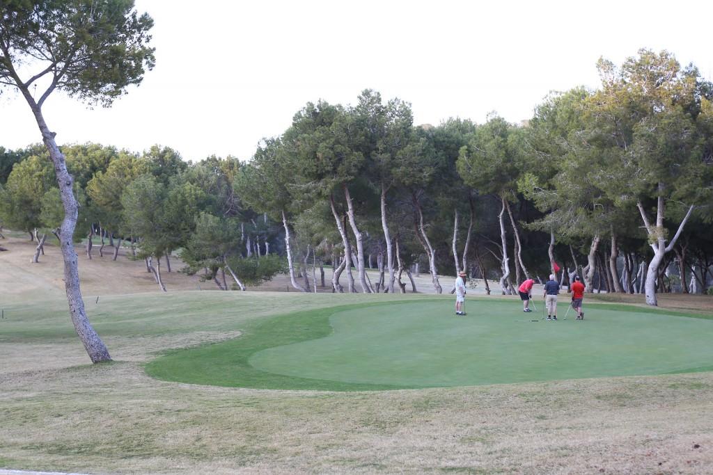 CC8A8533_golf_18